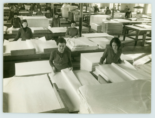 Industria della cellulosa: scelta della carta, 1947